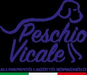 Allevamento Lagotto Romagnolo Del Peschio Vicale